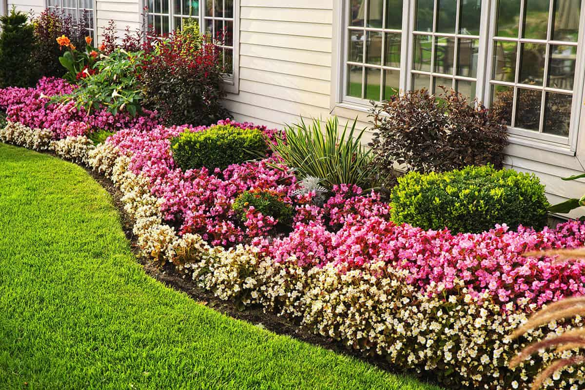Home Improvements - Landscaping